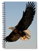 Bald Eagle Flying With Fish In Its Talons Spiral Notebook