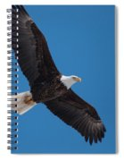 Bald Eagle In Flight 5 Spiral Notebook