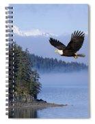 Bald Eagle In Flight Over The Inside Spiral Notebook