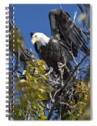 Bald Eagle On Nest Near The Oxbow Spiral Notebook