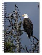 Bald Eagle On Watch Spiral Notebook