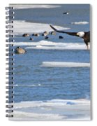 Bald Eagle Over Maumee River 2456 Spiral Notebook