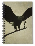 Bald Eagle Texture Spiral Notebook