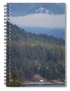 Bald Eagle V I I Spiral Notebook