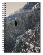 Bald Eagle V I Spiral Notebook