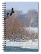 Bald Eagles At Providence Dam 1107 Spiral Notebook