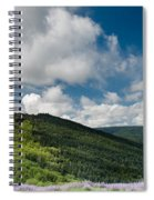 Bald Hills In Spring Spiral Notebook