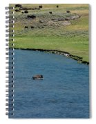 Baldy And Bull Spiral Notebook
