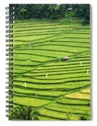 Bali Indonesia Rice Fields Spiral Notebook