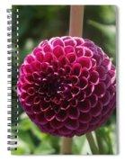 Ball Flower Spiral Notebook