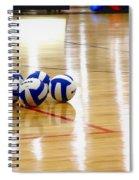 Ball Gang Spiral Notebook