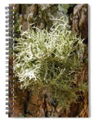 Ball Of Moss Spiral Notebook