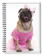 Ballerina Pug Dog Spiral Notebook