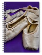 Ballerina Slippers Spiral Notebook