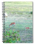 Bambi And The Twins  Spiral Notebook