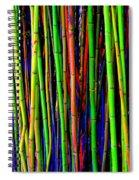 Bamboo Dream Spiral Notebook