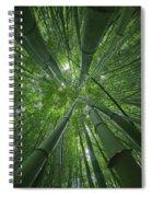Bamboo Forest 1 Spiral Notebook