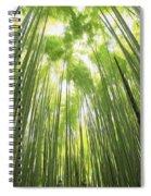 Bamboo Forest 5 Spiral Notebook