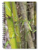 Bamboo I Poster Look Spiral Notebook
