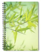 Bamboo In The Sun Spiral Notebook