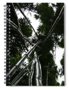 Bamboo Skies 2 Spiral Notebook