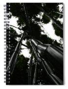 Bamboo Skies 3 Spiral Notebook