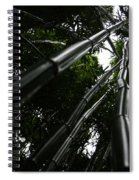Bamboo Skies 4 Spiral Notebook