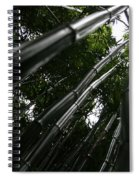 Bamboo Skies 6 Spiral Notebook