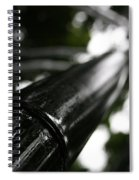 Bamboo Skies 7 Spiral Notebook