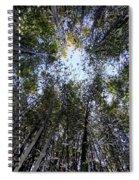 Bamboo Sky Spiral Notebook
