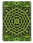 Bamboo Symmetry Spiral Notebook
