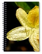 Banana Azalea  Spiral Notebook