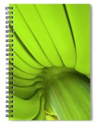 Banana Bunch Spiral Notebook