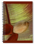 Banana Composition I Spiral Notebook