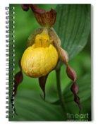 Banana Curls Spiral Notebook