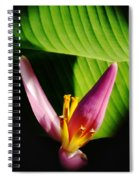 Banana Flower Spiral Notebook