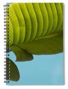 Banana Leaf And Maui Sky Spiral Notebook