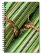 Banana Leaves Spiral Notebook