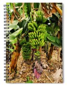 Banana Tree Spiral Notebook
