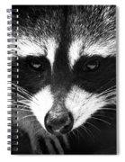 Bandit Spiral Notebook