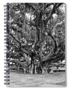 Banyan Tree Spiral Notebook
