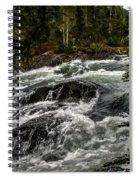 Baranof River Spiral Notebook