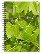 Barbwire And Vine Spiral Notebook