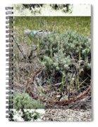 Barbwire Wreath 2 Spiral Notebook