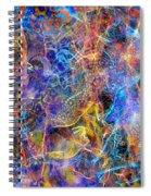 Bardo Spiral Notebook