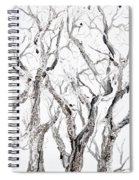 Bare Branches Print Option 2 Spiral Notebook