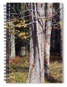 Bare Spiral Notebook