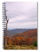 Bare Naked Tree Spiral Notebook