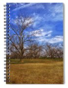 Bare Pecan Trees Spiral Notebook