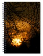 Bare Tree Branches With Winter Sunrise Spiral Notebook